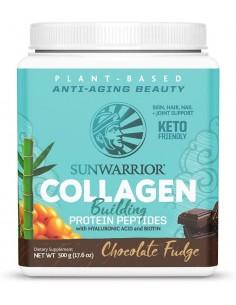 Collagen Chocolate Fudge  SW-501  Inicio