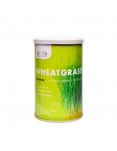 Wheatgrass Powder  REG-523  PRODUCTOS KETO